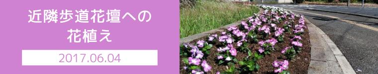 近隣歩道花壇への花植え